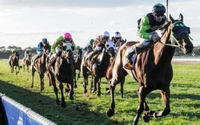 August 16, 2017 – Wednesday Horse Racing Tips for Canterbury & Sandown
