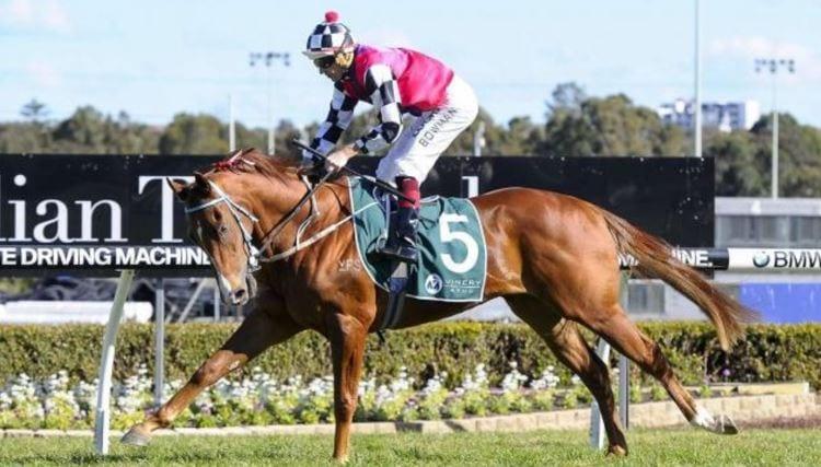 nictock race horse - august 23 wednesday horse racing tips