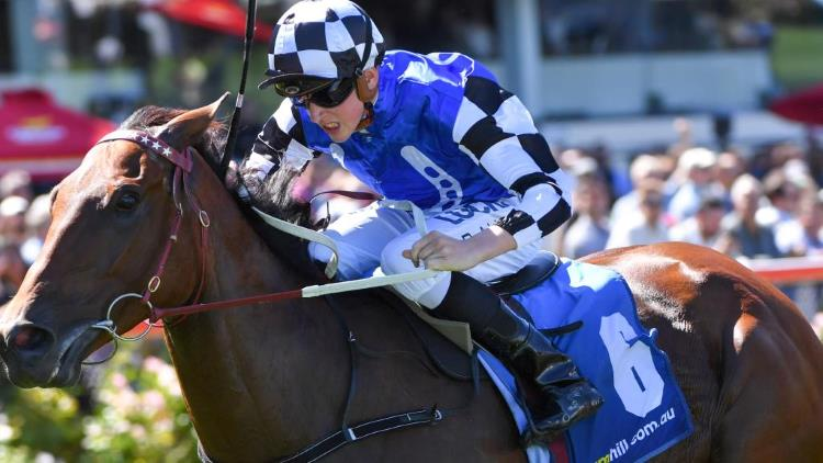 August 19, 2017 – Saturday Horse Racing Tips for Randwick & Caulfield