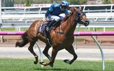 August 12, 2017 – Saturday Horse Racing Tips for Rosehill & Flemington