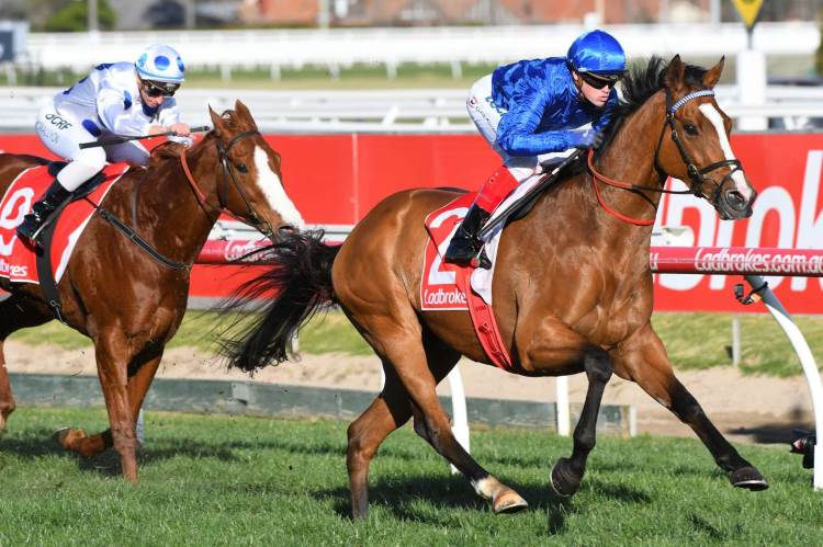 October 1, 2017 – Sunday Horse Racing Tips For Caulfield