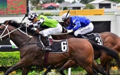 September 27, 2017 – Wednesday Horse Racing Tips For Rosehill & Flemington