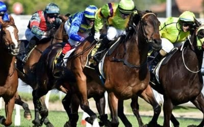 September 6, 2017 – Wednesday Horse Racing For Sandown & Warwick Farm