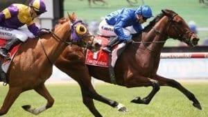 november 1 wednesday horse racing tips