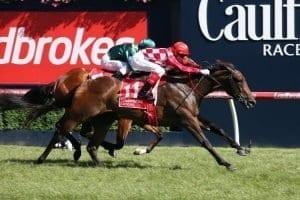 october 14 saturday caulfield horse racing tips