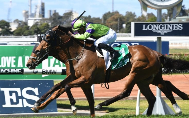 October 14, 2017 – Saturday Horse Racing Tips For Randwick