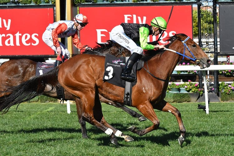 october 18 2017 blue diamond stakes racing tips