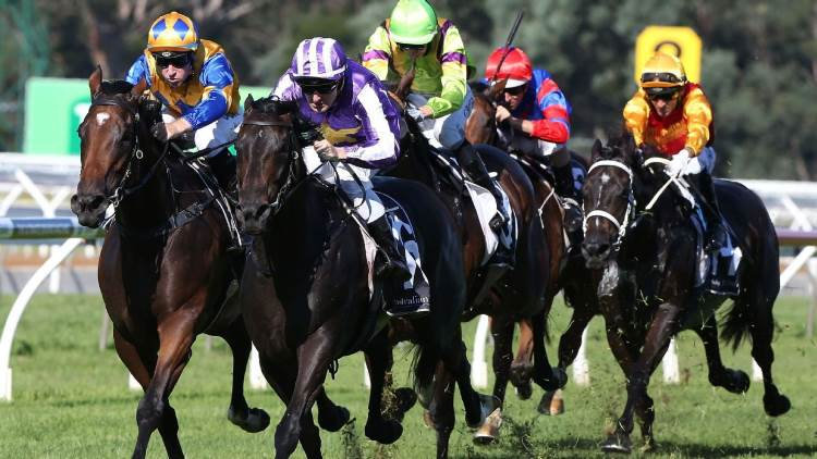 October 7, 2017 – Saturday Horse Racing Tips For Randwick