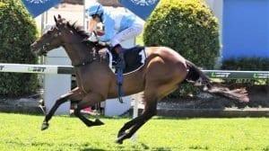 december 1 friday horse racing tips