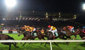 november 10 friday cranbourne horse racing tips