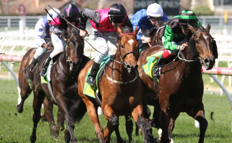 November 22, 2017 – Wednesday Horse Racing Tips for Sandown & Canterbury