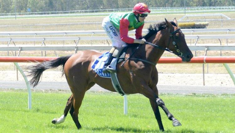 november 29 wednesday horse racing tips