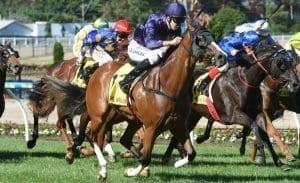 november 3 friday moonee valley horse racing tips