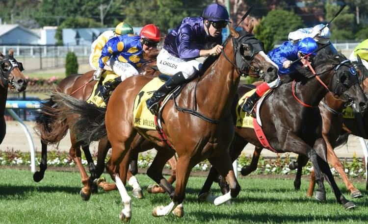 November 3, 2017 – Friday Horse Racing Tips For Moonee Valley