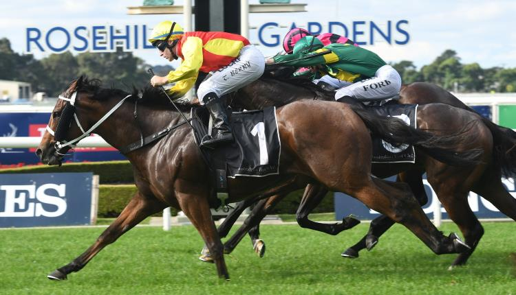 November 4, 2017 – Saturday Horse Racing Tips For Rosehill