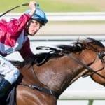 arcadia queen racehorse