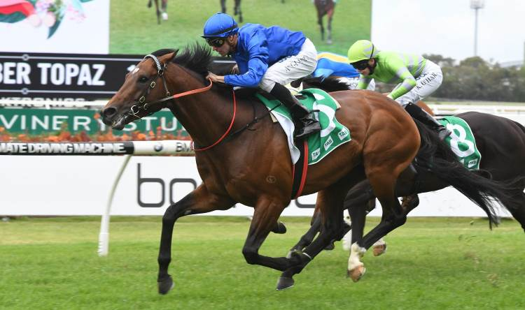 December 16, 2017 – Saturday Horse Racing Tips For Randwick and Caulfield