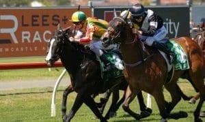 november 6 wednesday horse racing tips