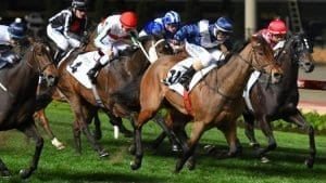 january-13-2018-saturday-horse-racing-tips