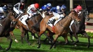 january 13 2018 saturday horse racing tips