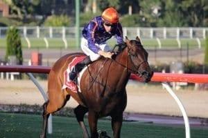 january 3 2018 wednesday horse racing tips