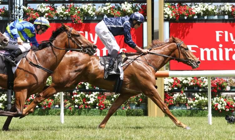 january 7 2018 sunday horse racing tips for caulfield