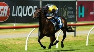 magic millions 2yo 2018 horse racing preview and bets