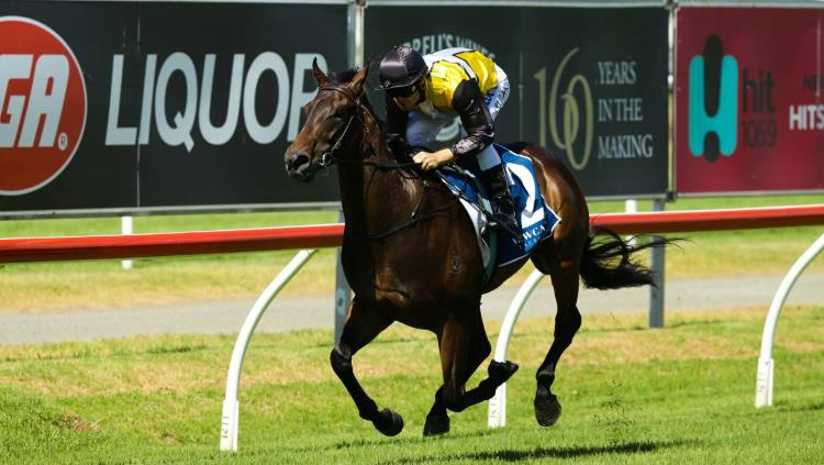 MAGIC MILLIONS 2YO GUINEAS 2018 – FIELD PREVIEW, ODDS & TIPS