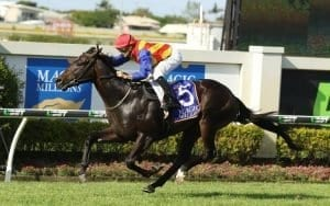 magic millions 3yo 2018 horse racing preview and bets