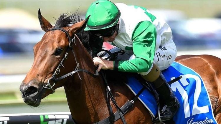 Magic Millions 3YO Guineas 2019 – Horses, Betting Tips & Odds