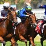 loving gaby racehorse