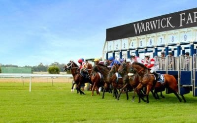 warwick farm horse racing