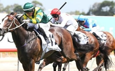 24/08/19 – Saturday Horse Racing Tips for Gold Coast