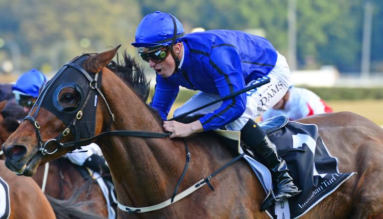 Canterbury Stakes 2018 – Field Preview, Odds & Tips