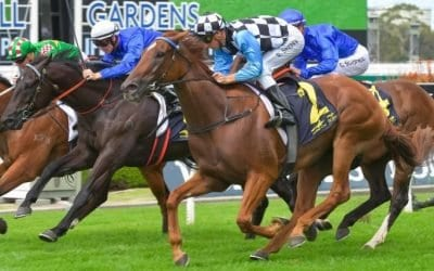 March 24, 2018 – Saturday Horse Racing Tips for Rosehill & Mornington