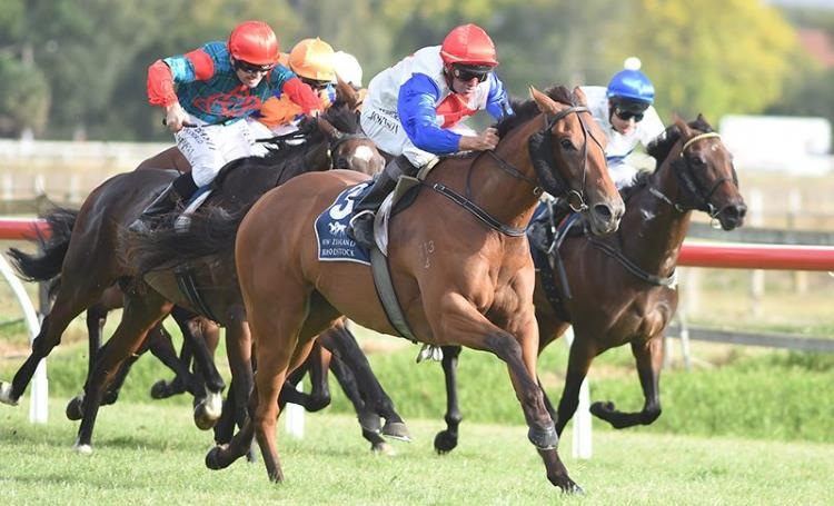 New Zealand Oaks 2018 – Field Preview, Odds & Tips