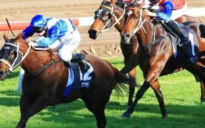 April 25, 2018 – Wednesday Horse Racing Tips for Flemington & Randwick