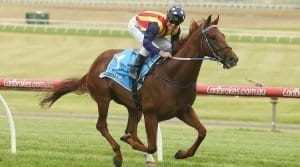 nature strip racehorse