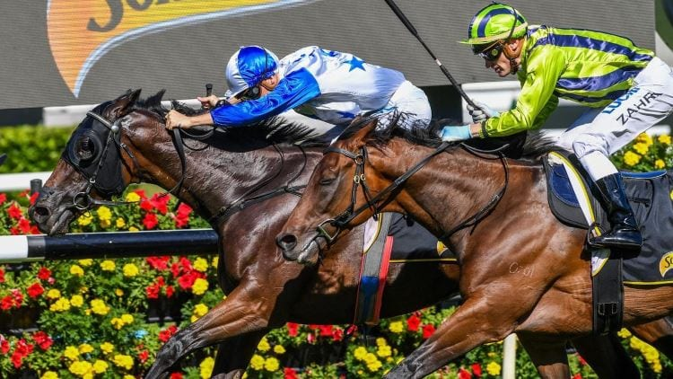 Sydney Cup 2018 – Field Preview, Odds & Tips