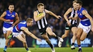 afl round 11 2018 expert betting tips