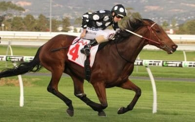 South Australian Derby 2018 – Field Preview, Odds & Tips