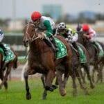 life less ordinary racehorse