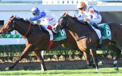 Stradbroke Handicap 2019 – Field Preview, Odds & Tips