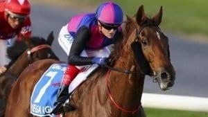 vega magic racehorse