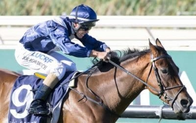 Winterbottom Stakes 2018 – Field Preview, Odds & Tips
