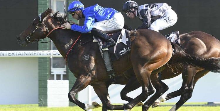 June 11, 2018 – Queen's Birthday Horse Racing Tips for Randwick & Mornington