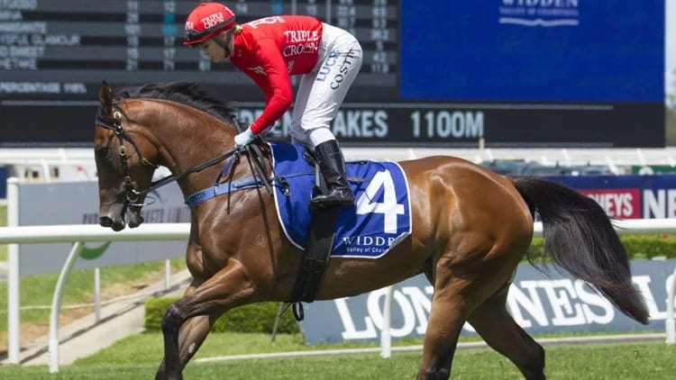 July 18, 2018 – Wednesday Horse Racing Tips for Warwick Farm & Sandown