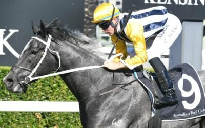 Queensland Derby 2019 – Field Preview, Odds & Tips