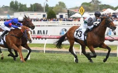 Quinella vs. Exacta – Horse Racing Bet Types Expained