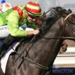 Begood Toya Mother racehorse